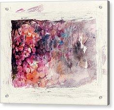 Hidden Beauty Acrylic Print by Rachel Christine Nowicki