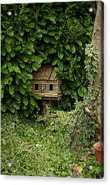 Hidden Birdhouse Acrylic Print