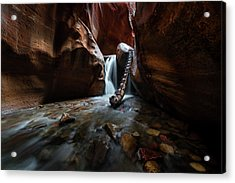 Hidden Canyon Acrylic Print by Larry Marshall