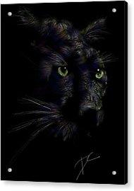 Acrylic Print featuring the digital art Hidden Cat by Darren Cannell