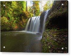 Hidden Falls In Rock Creek Acrylic Print by David Gn