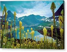 Hidden Lake, Gnp Acrylic Print