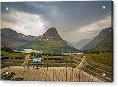 Hidden Lake Overlook // Glacier National Park Acrylic Print