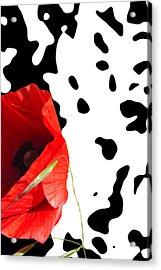 Hidden Poppy Acrylic Print by Martine Affre Eisenlohr