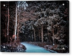 Hidden Steps At Dawn Acrylic Print