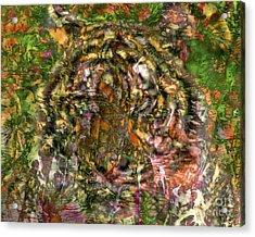 Hidden Tiger Acrylic Print by Chuck Brittenham