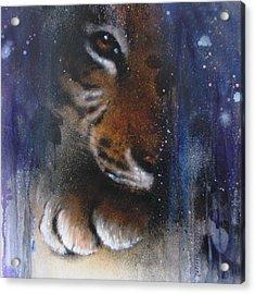 Hidden Tiger Acrylic Print