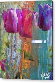 Hidden Tulips Acrylic Print by  Cid