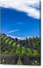 Hidden Valley Hills Acrylic Print