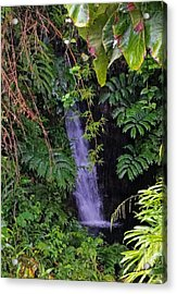 Small Hidden Waterfall  Acrylic Print