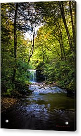 Acrylic Print featuring the photograph Hidden Wonders by Marvin Spates