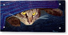 Acrylic Print featuring the drawing Hide And Seek by Brent Ander