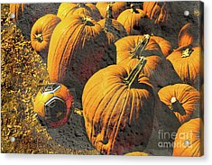 Hiding In Plain Pumpkin Acrylic Print