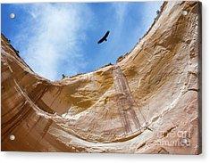 High Above Echo Amphitheater Acrylic Print