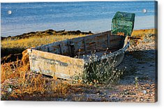 High And Dry Acrylic Print