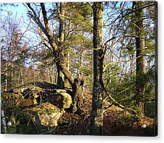 High Atop White's Road Solitude Is Met By Dawn Acrylic Print by Terrance DePietro