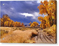 High Desert Autumn II Acrylic Print by SB Sullivan