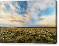 Acrylic Print featuring the photograph High Desert Morning by Ryan Manuel