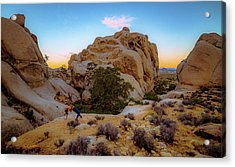 Acrylic Print featuring the photograph High Desert Pose by T Brian Jones