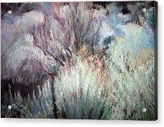 High Desert Seduction Acrylic Print by Anita Stoll