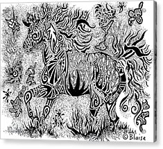 High Horse Acrylic Print by Yvonne Blasy