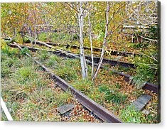 High Line Print 2 Acrylic Print by Terry Wallace