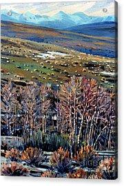 High Sierra Acrylic Print by Donald Maier
