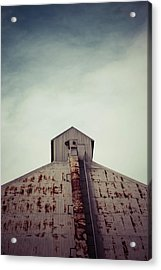 Acrylic Print featuring the photograph High View by Trish Mistric