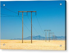High Voltage Acrylic Print by Todd Klassy