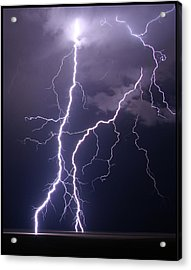 High Voltage! Acrylic Print by Pat Gaines