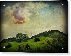 Higher Love Acrylic Print by Laurie Search