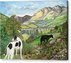 Highland Hounds Acrylic Print