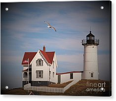 Highlighting The Nubble Light Acrylic Print