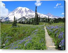 Hiking In The Wildflowers Acrylic Print by Lynn Hopwood