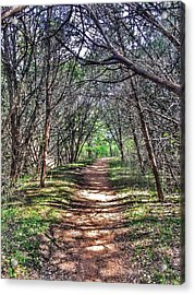 Hiking Meridian State Park  Acrylic Print