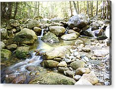 Hiking Near The Trail Acrylic Print by Michael Mooney