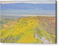 Acrylic Print featuring the photograph Hiking The Temblor by Marc Crumpler