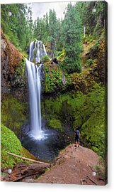 Hiking To Falls Creek Falls Acrylic Print by David Gn