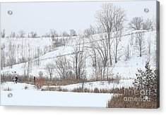 Acrylic Print featuring the photograph Hiking Trail With People And Dogs by Charline Xia