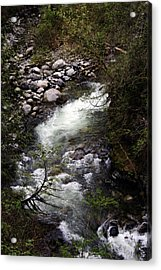 Hiking Wallace Falls#1 Acrylic Print