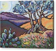 Hill Country Dusk Acrylic Print