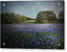 Hill Country Ranch Acrylic Print