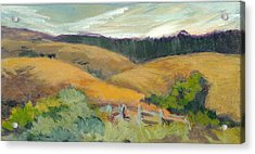 Hills Above Silicon Valley Acrylic Print by Barbara Moore