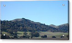 Hills Of Oak Acrylic Print by Jean Booth