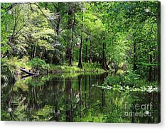 Hillsborough River Vista Acrylic Print