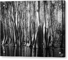 Hillsborough Zen Acrylic Print