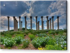 Hilltop Pillars Acrylic Print by Kevin Hill