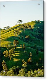 Hilltop Shadows Acrylic Print by Az Jackson