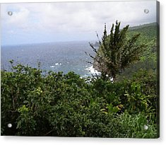 Hilo Coast Hawaii Acrylic Print by Don Phillips