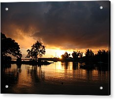 Hilo Gold Acrylic Print by Ron Holiday Broomell